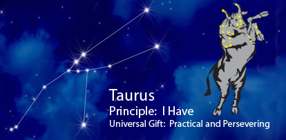 Primary power for Your Taurus Compatibility