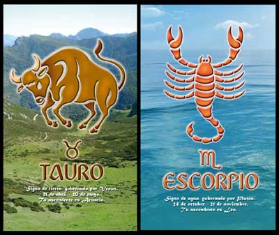 Taurus and Scorpio Compatibility Match and Love Relationships